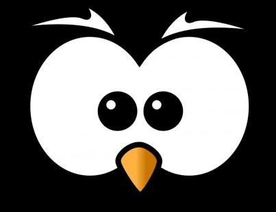 可爱 愤怒的小鸟