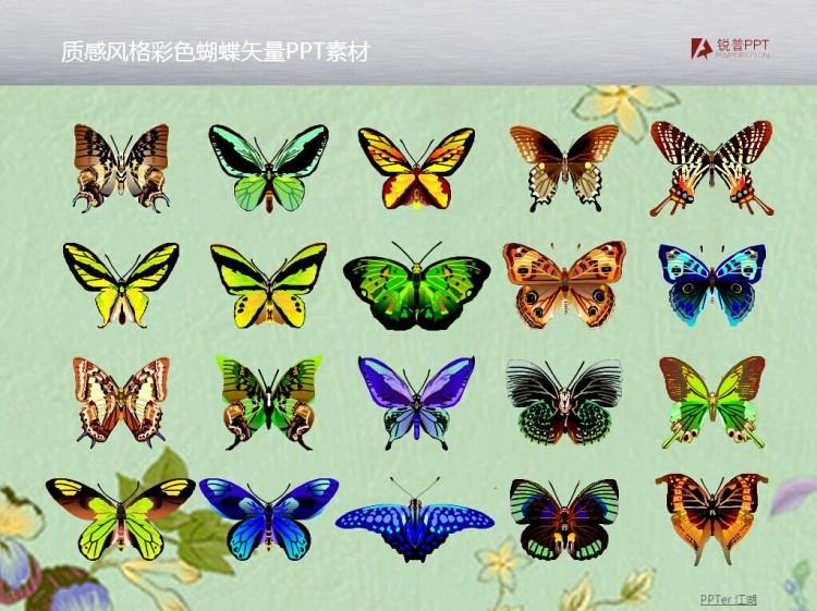 质感风格彩色蝴蝶矢量ppt素材