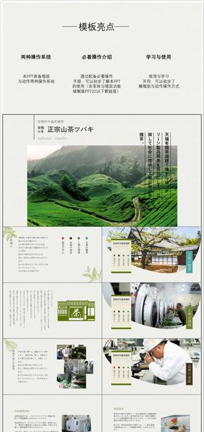 纸黄色简洁风格茶店/茶产品宣传PPT模板