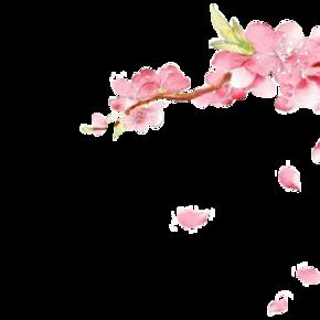 手绘桃花 花瓣 落下png素材
