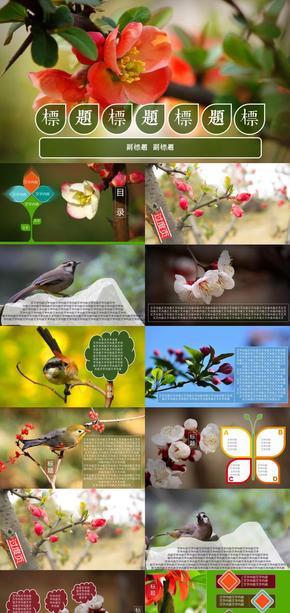 鸟语花香主题工作模板