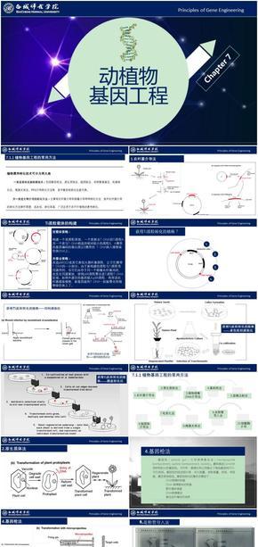 基因工程原理与技术-第7章-转基因动植物