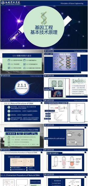 基因工程原理与技术-第2章-2.1核酸的提取与鉴定