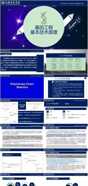 基因工程原理与技术-第2章-2.2PCR 技术
