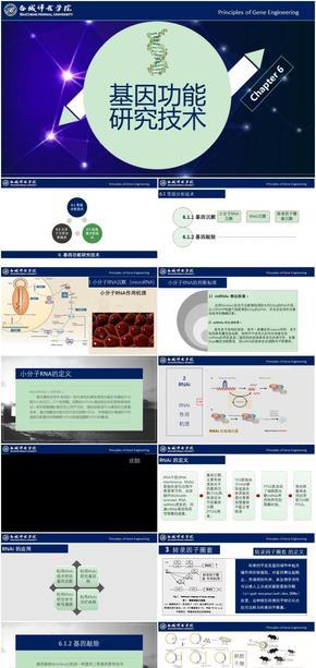 基因工程原理与技术-第6章-基因功能研究技术