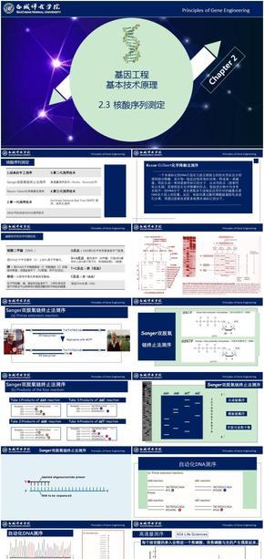 基因工程原理与技术-第2章-2.3-核酸序列测定