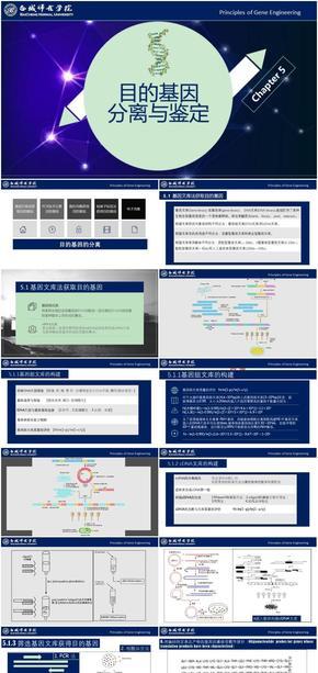 基因工程原理与技术-第5章-目的基因分离与鉴定