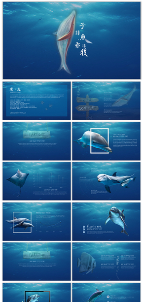 【子非鱼】海洋创意大气商务汇报模板