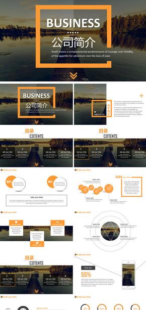 商务欧美简约公司简介介绍商业计划书创业融资工作汇报报告计划总结年终年中PPT模板