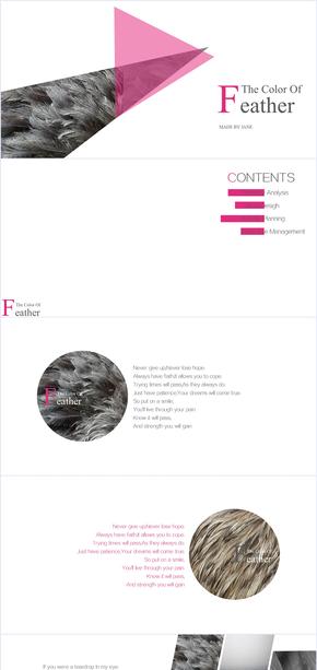 新店回馈——The color of feather-对比色时尚扁平化PPT模板