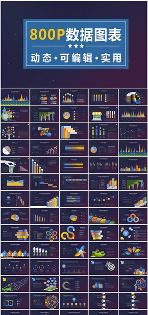 800P商务数据统计分析动态PPT图表大全