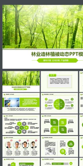 绿色森林植树造林林业木材园林绿化PPT家具地板园林设计