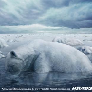 【海报分享计划】环保系列海报27-北极熊