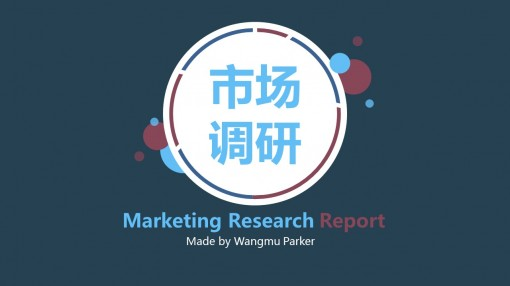 【简约风】市场调研报告 工作计划 年终总结 ppt模板