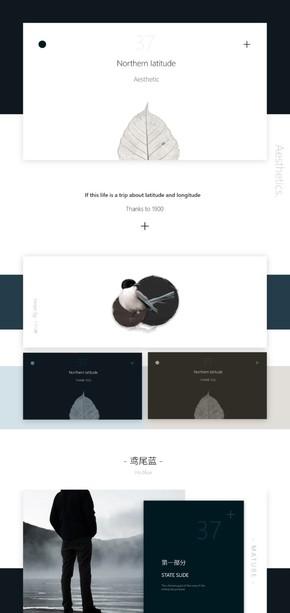 鸢尾蓝简约美学工作汇报设计---[二三年]《北纬37°》