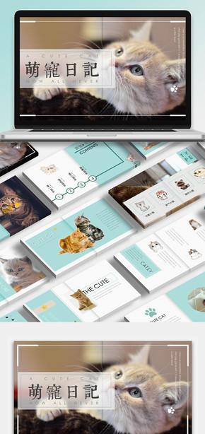 【萌翻了】 可爱萌宠之可爱猫咪画册主题模板|宠物
