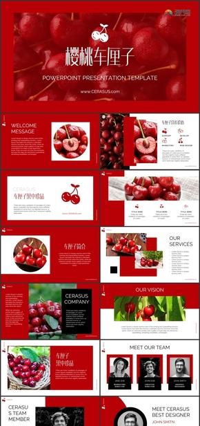 车厘子樱桃水果商业计划书PPT模板