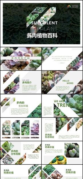 原创绿色清新多肉植物介绍教育课件PPT模板