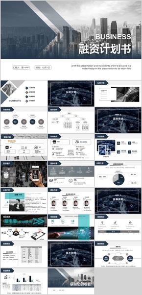苹果灰-电商平台-商业计划书-真实案例改写,结构完全金融化,可直接使用