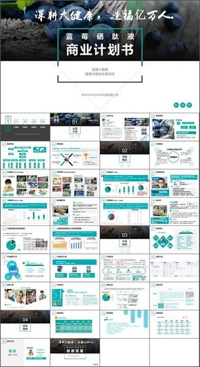 商业计划书案例,市场分析、产品优势、竞品分析,财务策划等全套真实方案