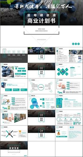 高端商业计划书,产品规划,供应链一站式营销,金融方案