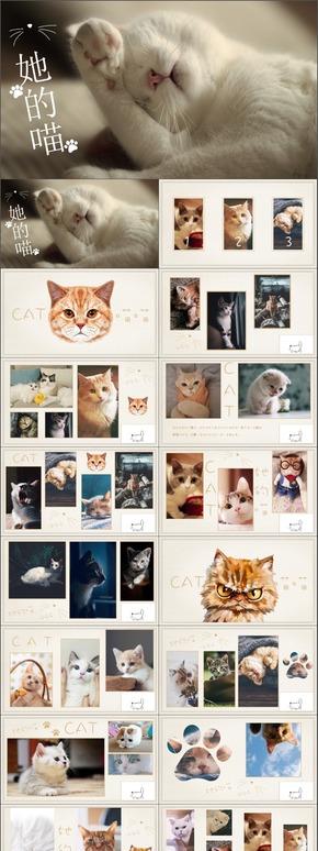 可爱喵咪宠物行业猫咪日常摄影记录动态PPT模板