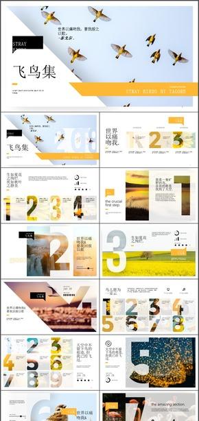 动态小清新透视飞鸟集诗集节选粗字体数字设计PPT模板