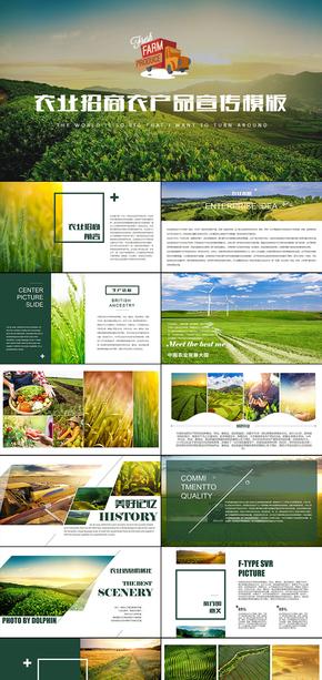 绿色生态农业招商农产品PPT模板企业宣传演示模版