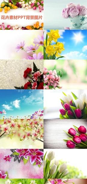 花卉素材PPT背景图片