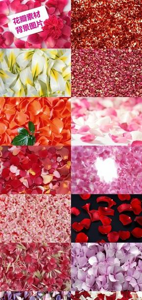 花瓣素材背景图片