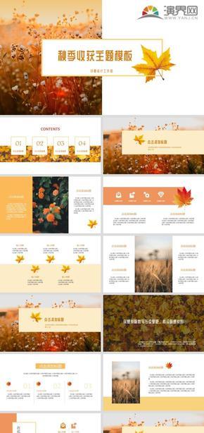 橙色秋季楓葉主題PPT模板