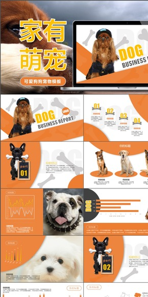 宠物狗饲养品种介绍动态PPT模板