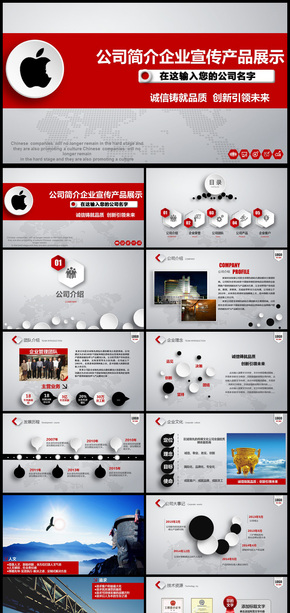 企业介绍公司简介文化宣传团队精神商务汇报ppt模板