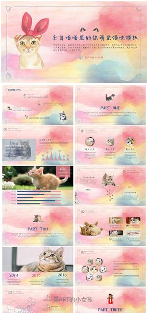 可爱猫咪宠物模板 萌宠汇报计划总结儿童教学课件公益宣传行业通用