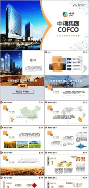 中粮集团有限公司企业介绍推广宣传模板