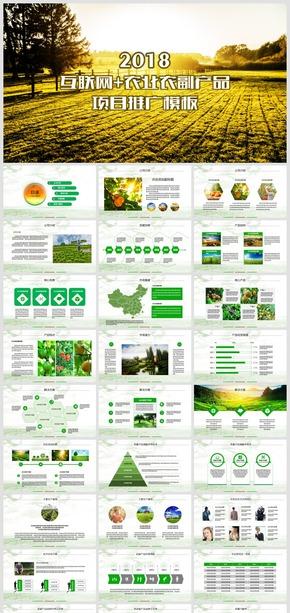 2018乡村田园互联网农业农副产品项目推广模板