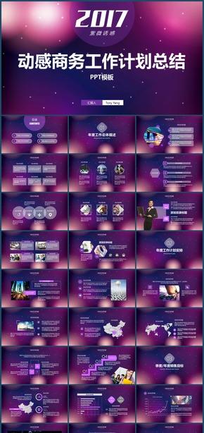 紫薇诱惑舞动线条风商务2017工作计划总结汇报PPT模板