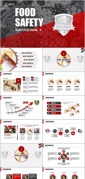 2019食品安全工作总结计划汇报模板