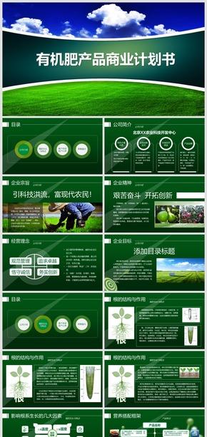 2018有机农业产品招商商业计划书模板