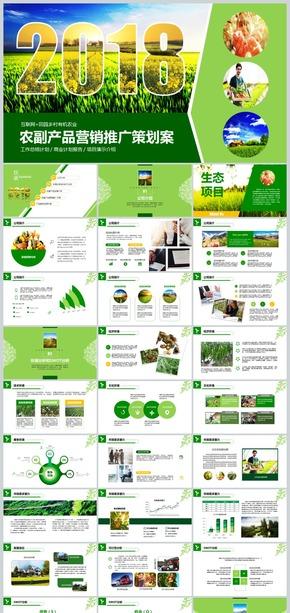 2018互联网加农副产品市场推广企业介绍模板