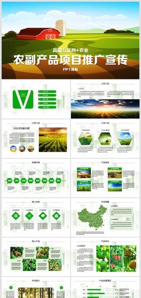 2018高端互联网农业农副产品项目品牌推广投资宣传PPT模板