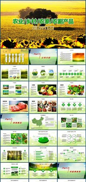 绿色农业乡村农家农副产品推广宣传PPT模板