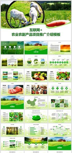 2018高端简约绿色农业乡村农家农副产品推广总结计划模板