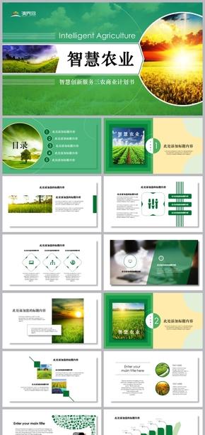 2019服务三农智慧创新商业计划书模板
