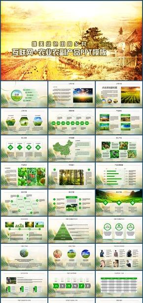 互联网农业农副产品推广宣传乡村田园PPT模板