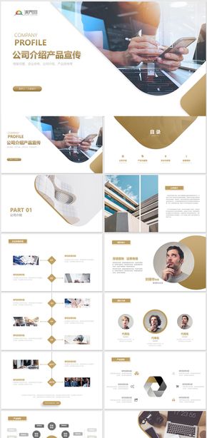 简约大气公司介绍企业介绍商业计划书商业策划书产品介绍宣传