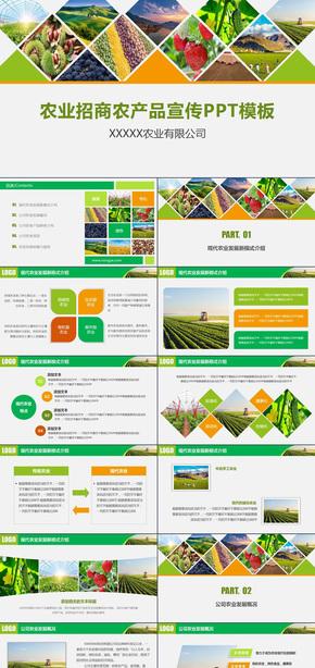 农业招商农产品宣传绿色环保有机农作物有机蔬菜PPT模板