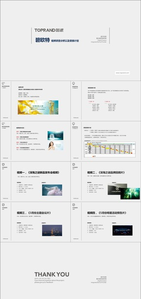 D-21碧欧特视频项目计划