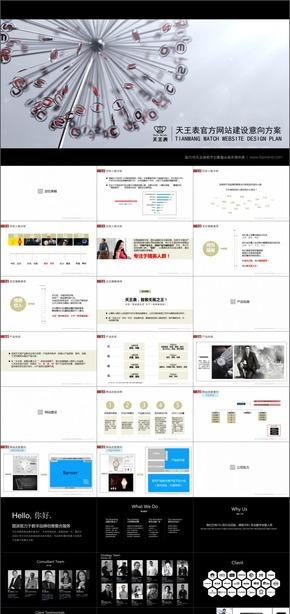 A-43天王表官方网站建设意向方案提案PPT广告公司