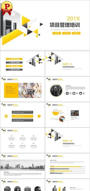 黑黄商务项目管理培训计划PPT模板